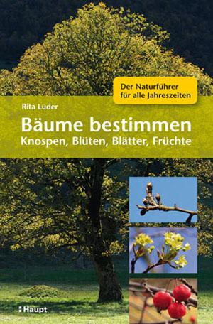 Haupt__Baeume_bestimmen_Cover_final.indd