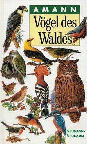 Vögel des Waldes