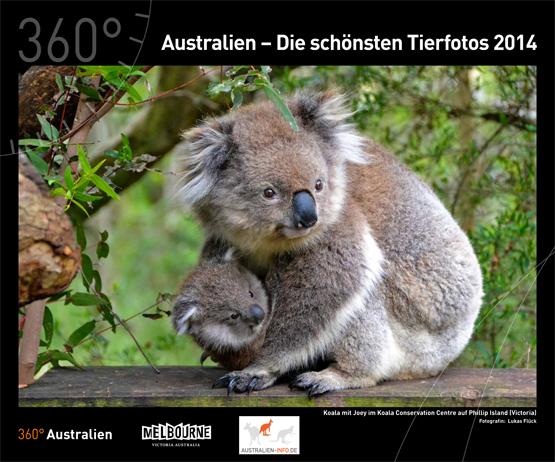 2014 Australien - Die schönsten Tierweltfotos 2014